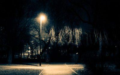 V noci nepotřebujeme jasné bílé světlo. Škodíme jím nejen sobě, ale i ostatním živým tvorům